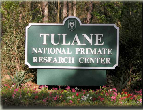 Tulane National Primate Researdch Center